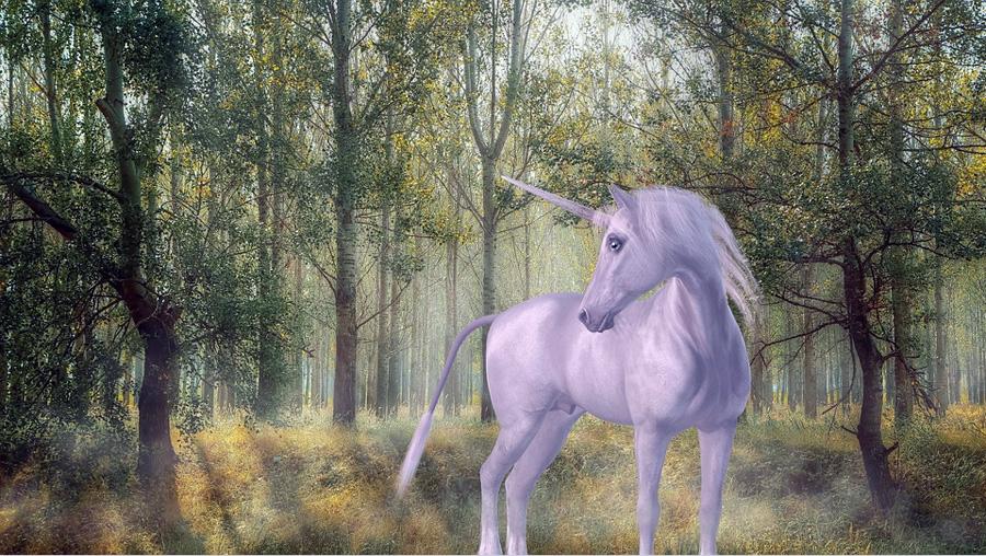 Libri fantasy da leggere: un viaggio nel fantastico, dove però si trovano molti riflessi del reale