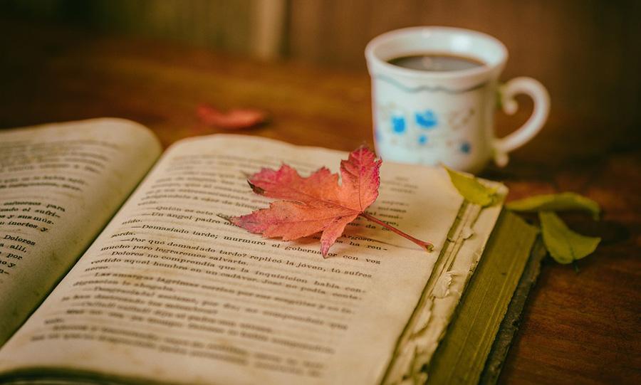 Tecniche di lettura: ai libri che vogliamo davvero gustare, bisogna dedicare il giusto tempo